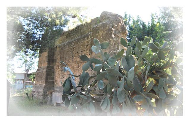 bonifica-chiesa-carmine-vecchio-2012